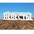 """Деревянная заготовка """"Подружки Невесты"""" 11х40х0,3 см"""