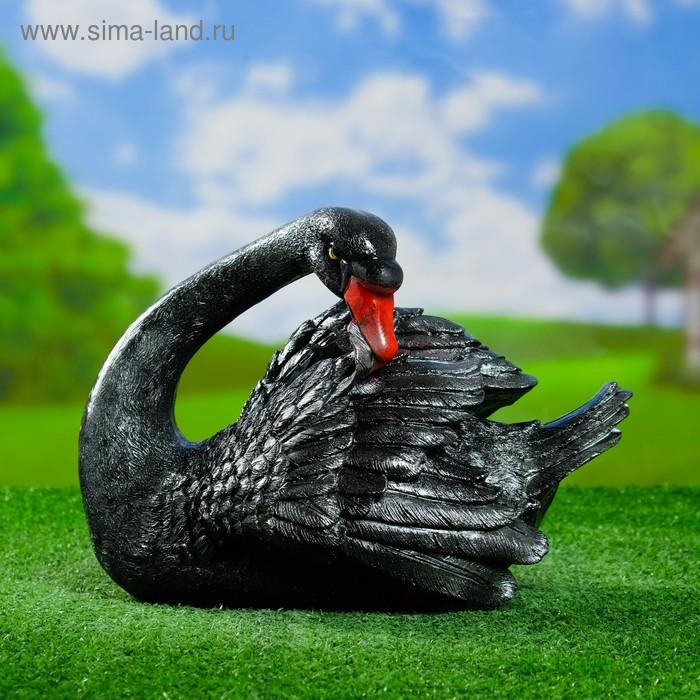 """Садовая фигура """"Лебедь чистящий пёрышки"""" чёрная"""