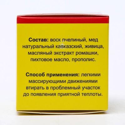 """Мазь ранозаживляющая «Монастырская. С живицей», 25 мл, """"Бизорюк"""""""