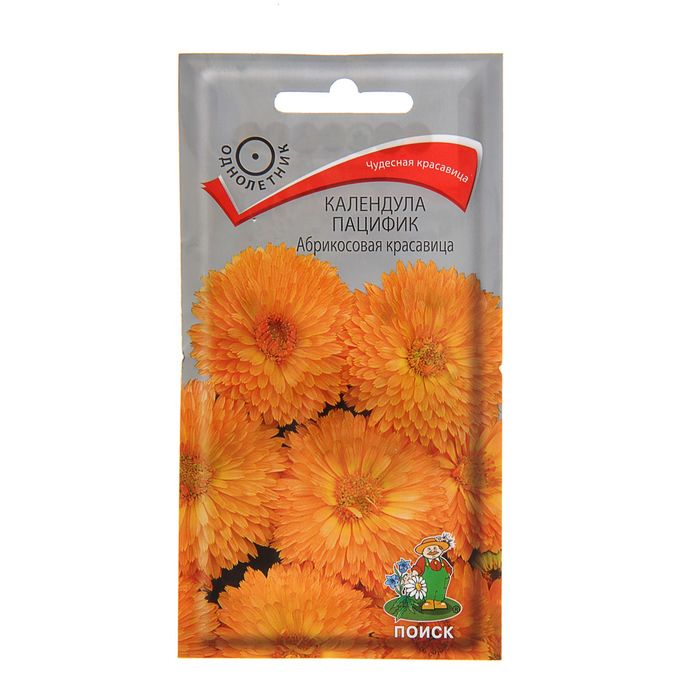 Календула цветки оптом цена, цветы марта желтые