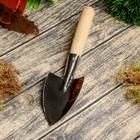 Совок посадочный, длина 30 см, толщина 0.8 мм, нержавеющая сталь, деревянная ручка