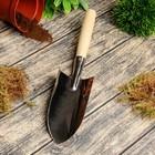 Совок посадочный, длина 36 см, толщина 0.8 мм, нержавеющая сталь, деревянная ручка
