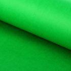 "Бумага тишью ""Зелёный флаг"", 50 х 76 см, 24 шт."