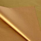 """Бумага тишью """"Золотисто-бронзовый"""", 50 х 76 см, 24 шт."""