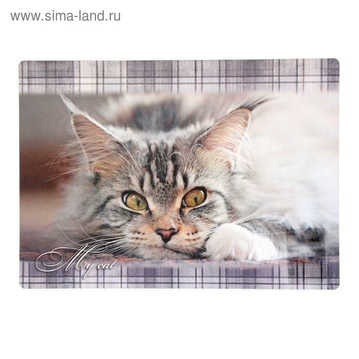 Накладка на стол дизайнерская «Мой кот», 339 х 224 мм, КН-4