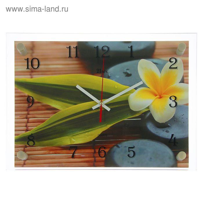 "Часы настенные прямоугольные ""Цветок на камне"", 25х35 см микс"