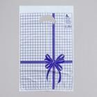 """Пакет """"Синяя клетка"""", полиэтиленовый с вырубной ручкой, 22 х 30 см, 12 мкм"""