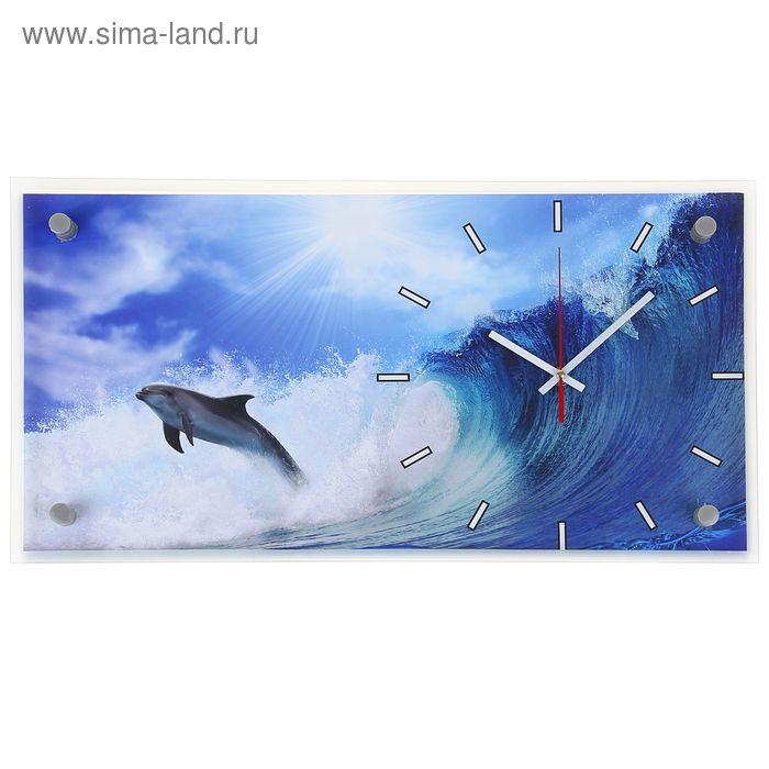 """Часы настенные прямоугольные """"Дельфин"""", 52х26 см"""
