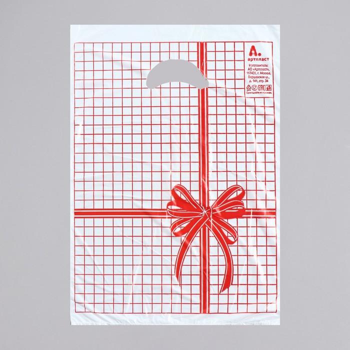 """Пакет """"Красная клетка"""", полиэтиленовый с вырубной ручкой, 22 х 30 см, 12 мкм - фото 308517474"""