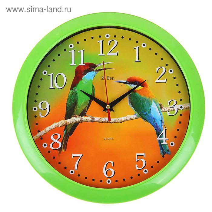 """Часы настенные круглые """"Птички"""", 26х26 см зеленый обод"""