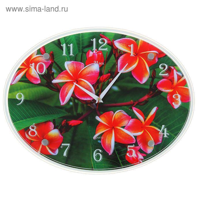 """Часы настенные овальные """"Красные цветы"""", 35х46 см"""