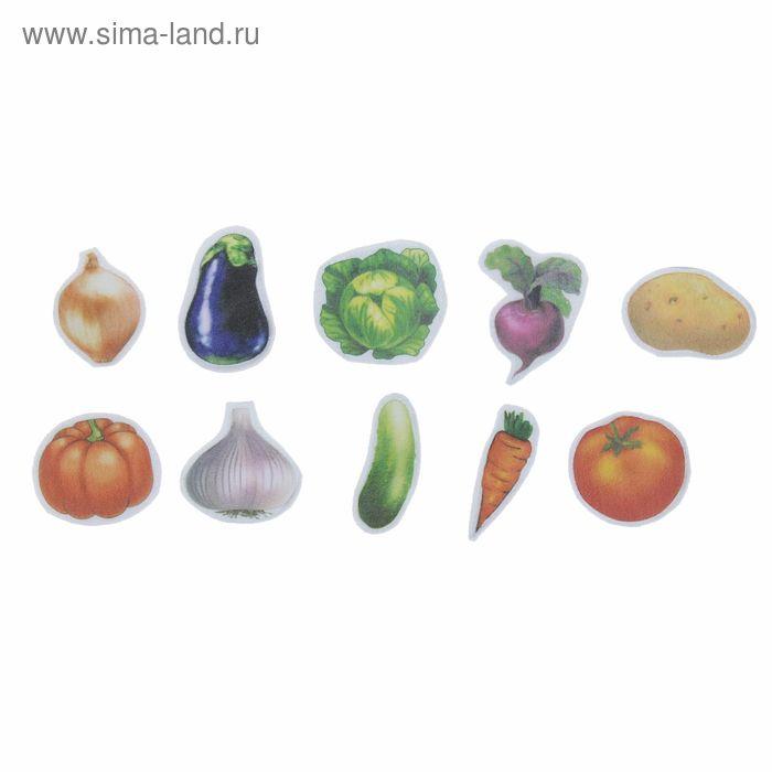 """Набор дидактический из ткани """"Овощи"""" на магните, 10 шт."""