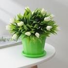 """Горшок для цветов с поддоном 0,7 л """"Эрика"""", цвет зеленый"""