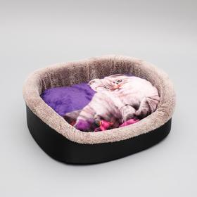 Лежанка №4, с кошкой, 53 х 38 х16 см, микс
