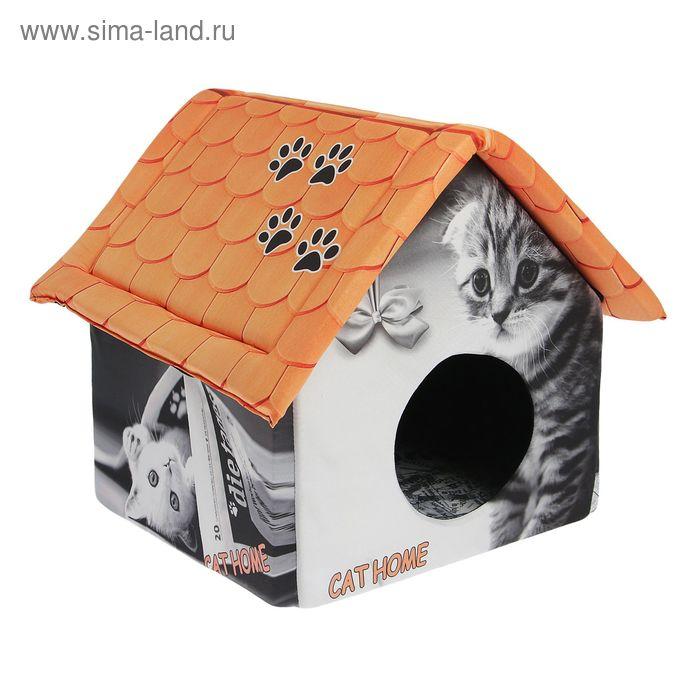 "Домик для животных ""Кошка с газетой"", 33 х 33 х 40 см"