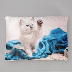 Подушка №4, 3D фотопечать, с кошкой, 48 х 36 см микс