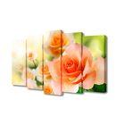 """Модульная картина на подрамнике """"Нежно-оранжевые розы"""", 2 — 63×25 см, 2 — 71×25 см, 1 — 80×25 см"""