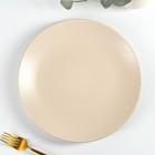 Тарелка обеденная Доляна «Пастель», d=27 см, цвет крем-брюле - фото 308067096