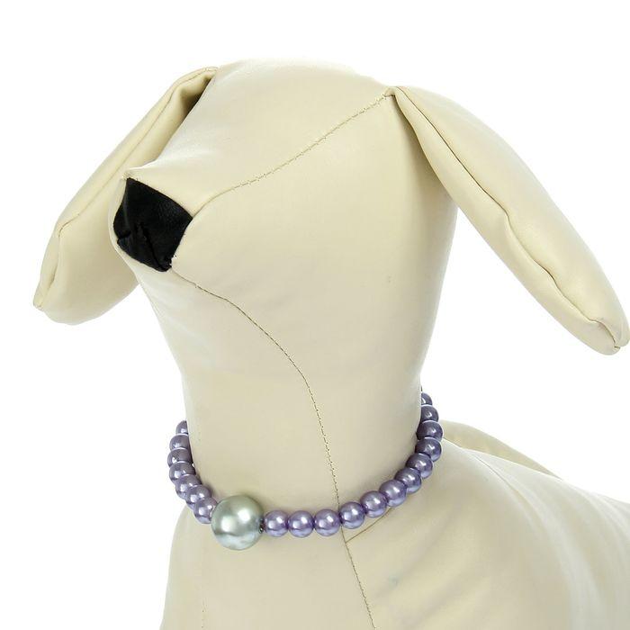 Ожерелье для животных с пластиковыми бусинами, обхват шеи 16 см