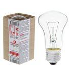 Filament lamp B, E27, 230 V, 60 W