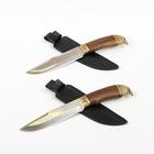 """Нож """"Беркут-2"""" г. Кизляр, рукоять-дерево, латунная гарда, сталь 65Х13"""