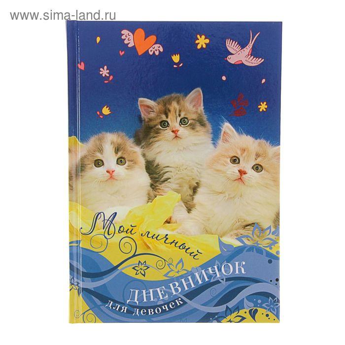 Мой личный дневничок. Котята на синей обложке
