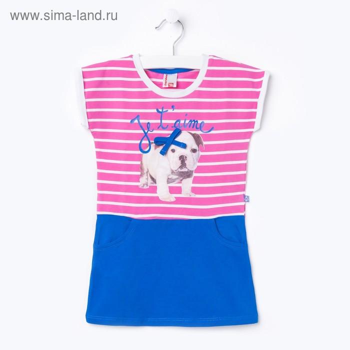 Платье для девочки, рост 110 см, цвет розовый/синий (арт.CSK 61136 (98))