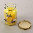 Свеча антимоскитная, для отпугивания насекомых , в стекле с крышкой №24