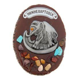 Магнит «Нижневартовск», с россыпью из натуральных камней в Донецке