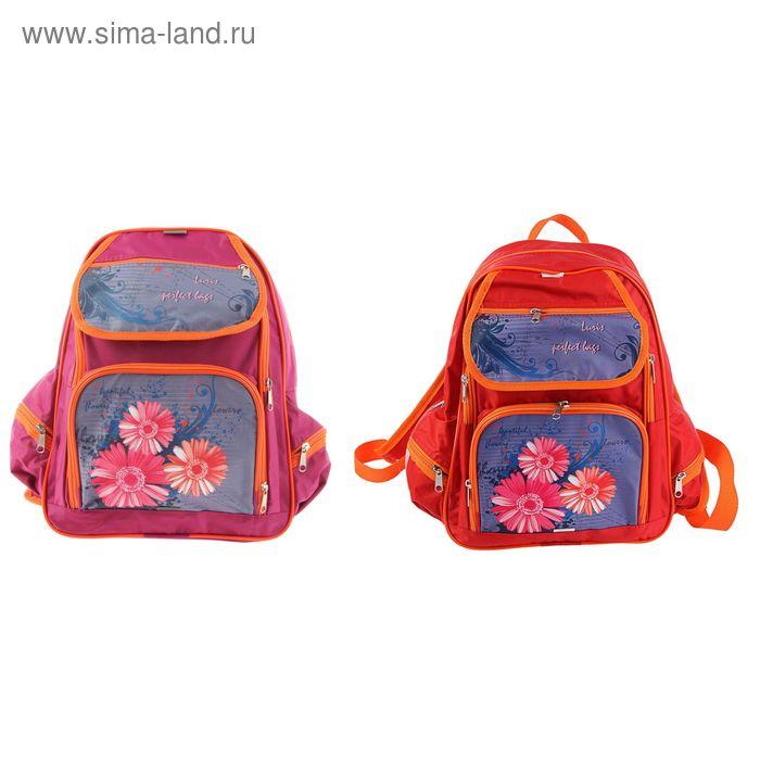 """Рюкзак школьный эргономичная спинка Luris 36*28*11 Пьеро ОРТ, для девочки """"Цеты"""" розовый"""