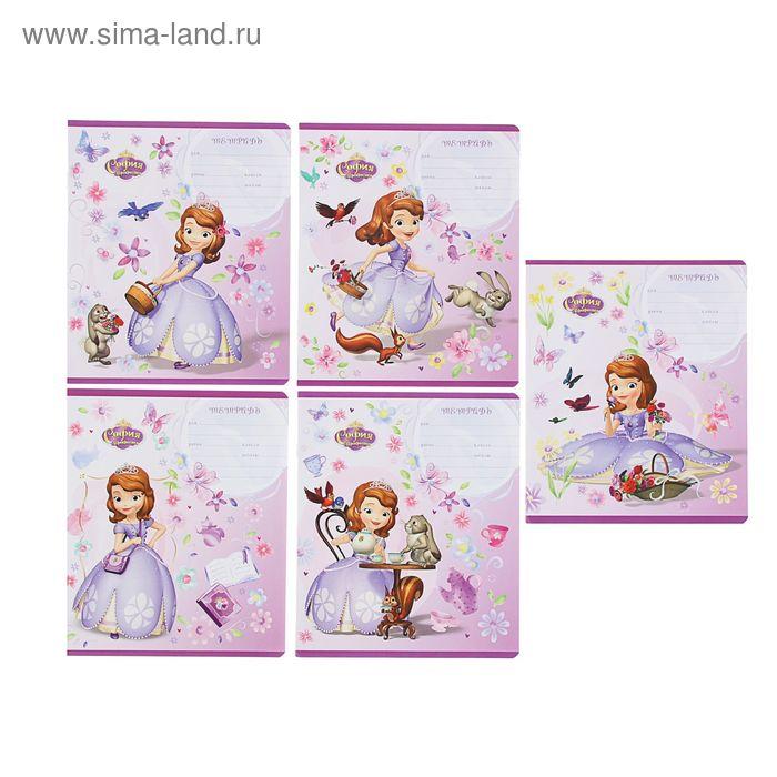 Тетрадь 12 листов линейка Sofia in flowers, картонная обложка, МИКС, EK 39542
