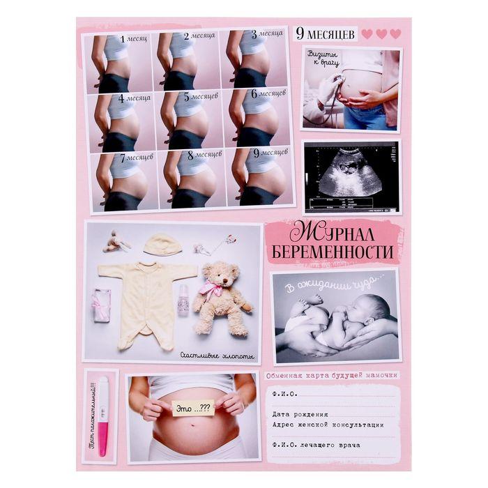"""Папка для обменной карты """"Журнал беременности"""""""