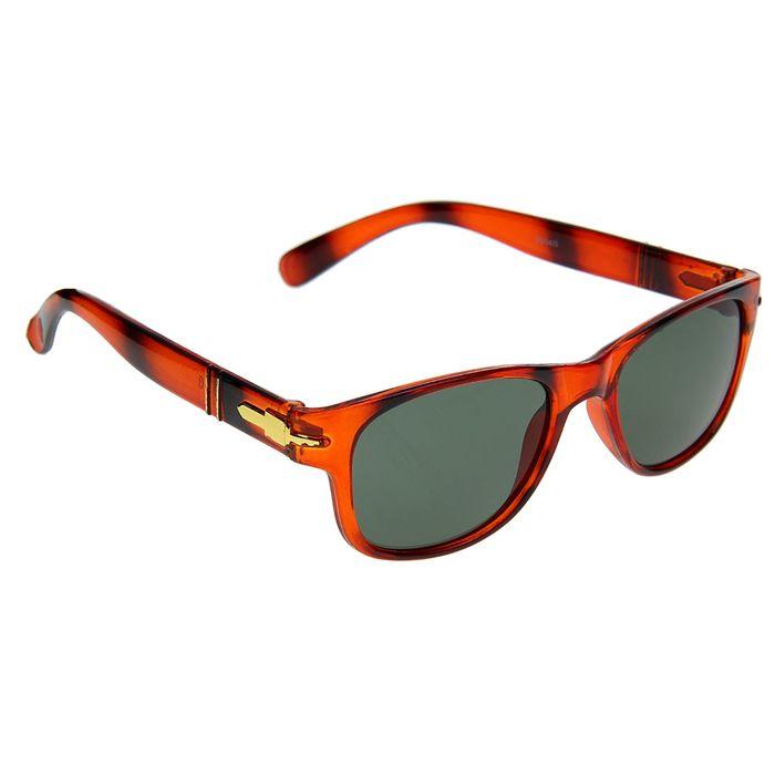 Очки солнцезащитные Wayfarer, оправа — коричневый тигр, дужки — вставка золото