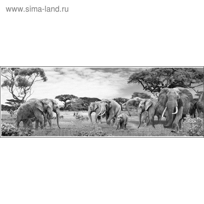 Фартук ХДФ Слоны монохром 695х2070х3 мм