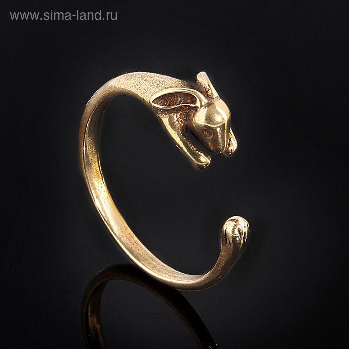 "Кольцо ""Зайя"", размер 18, цвет бронзовый"