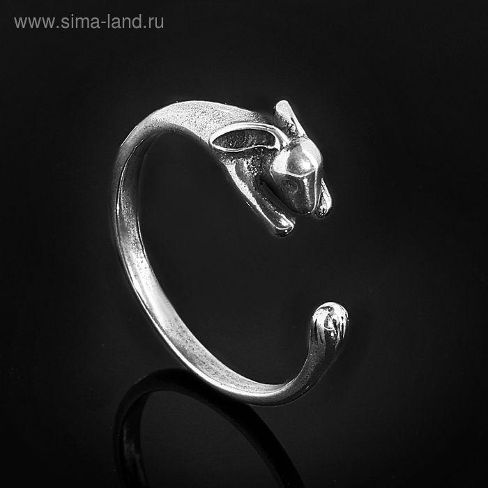 """Кольцо """"Зайя"""", размер 17, черненое серебро"""