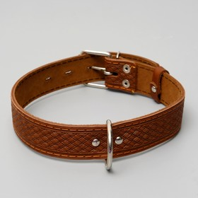 Leather dog collar single layer, 64 x 3.5 cm mix