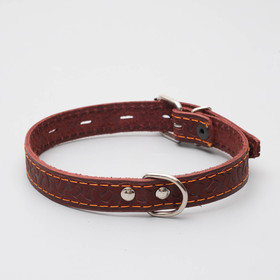 Leather dog collar single-ply, 48 x 2 cm, mix