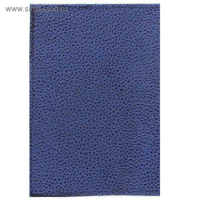 Обложка для паспорта, синий флотер