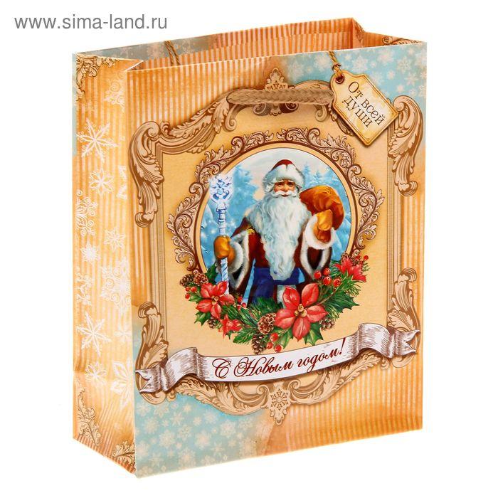 """Пакет ламинат вертикальный """"Дед Мороз"""" S"""