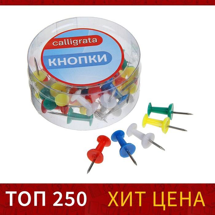 Кнопки силовые, цветные, 40 шт., в пластиковой коробке, CALLIGRATA