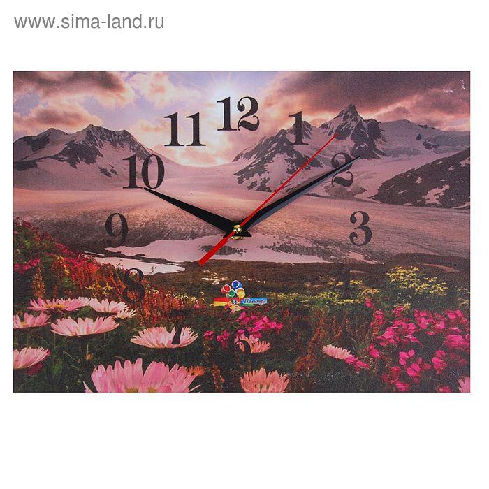 """Часы настенные прямоугольные """"Альпийские луга"""", 25х35 см"""