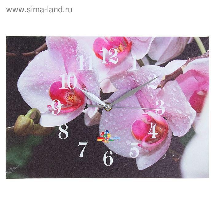 """Часы настенные прямоугольные """"Весна"""", 25х35 см"""