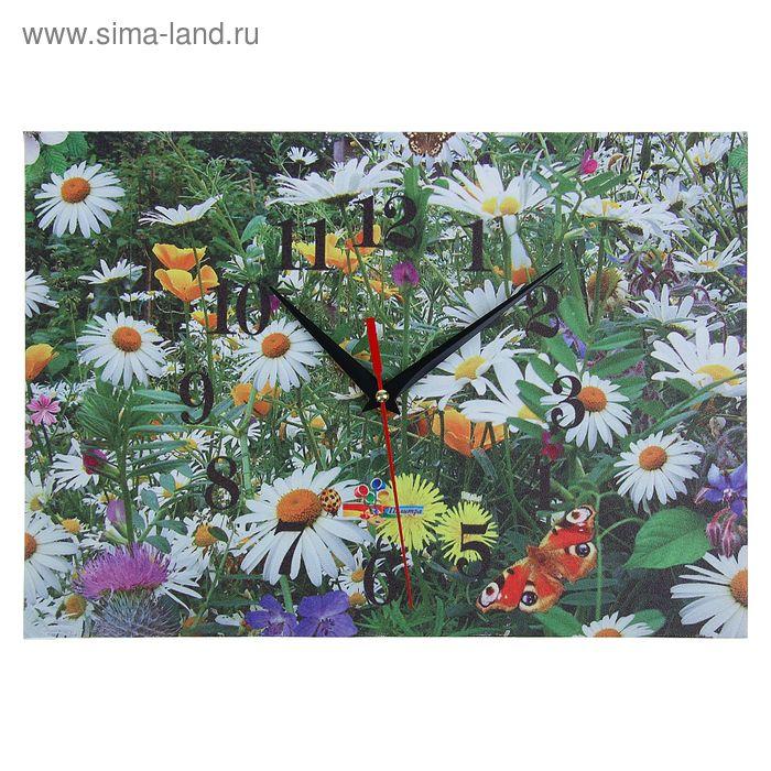 """Часы настенные прямоугольные """"Ромашковое поле"""", 25х35 см"""