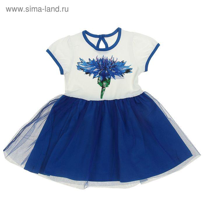 """Платье для девочки """"василёк"""", рост 104 см (54), цвет белый/василёк (арт. ДПК406804)"""