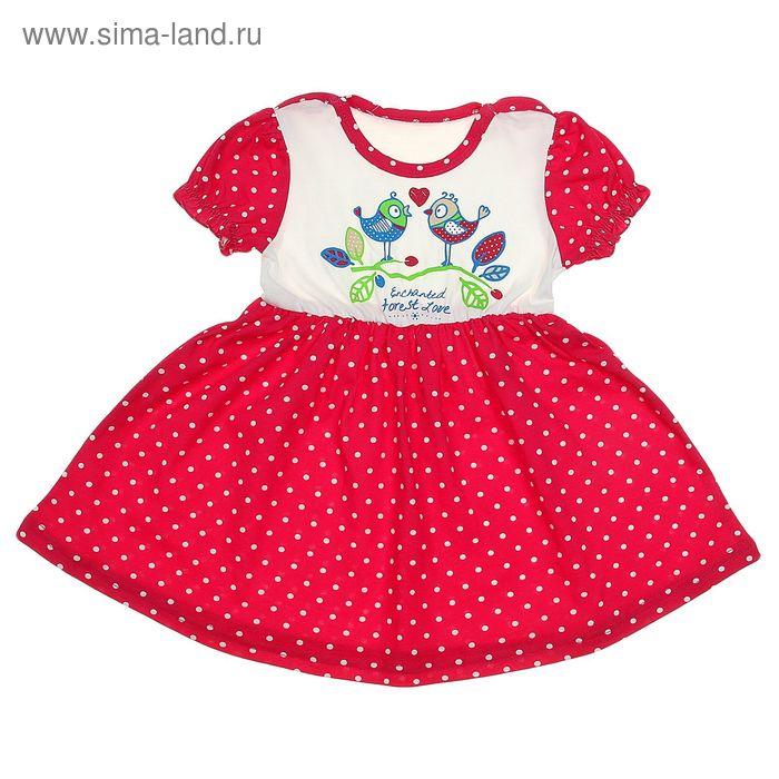 """Платье """"Платья для малышек"""", рост 92 см (54), цвет белый/малиновый, принт белый горошек ДПК881001н"""