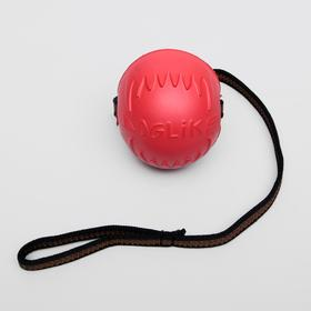 """Мяч для дрессировки """"ДогЛайк"""" с лентой, средний, диаметр 8,5 см, длина ленты 65 см"""