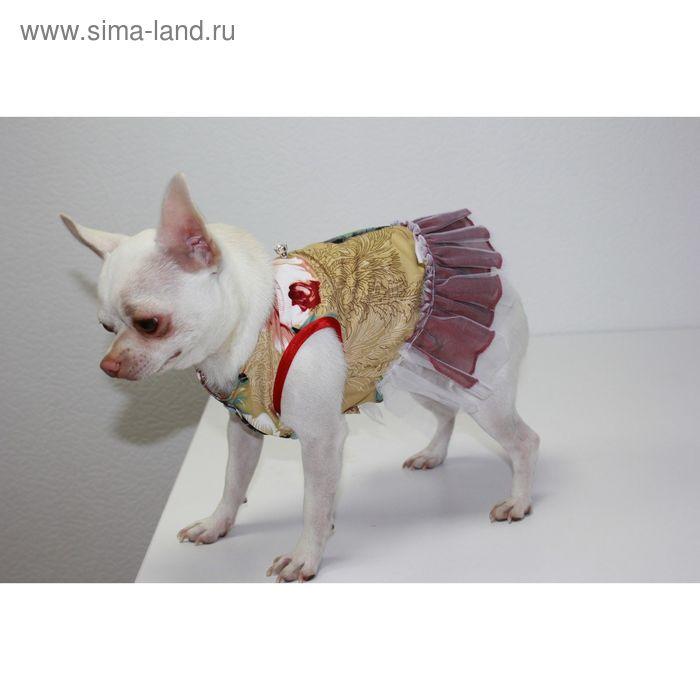 Платье, размер S (ОШ 24 см, ОГ 30 см, ДС 24 см)