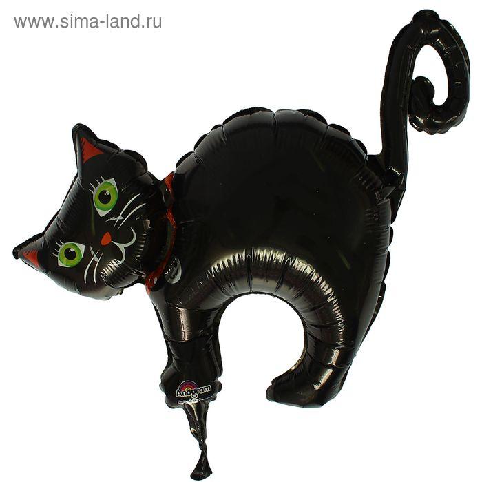 """Шар фольгированный 12"""" """"Чёрный кот"""", б/палочки"""