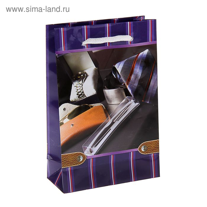 "Пакет подарочный ""Компаньон"" 17,5 х 11,5 х 5 см"